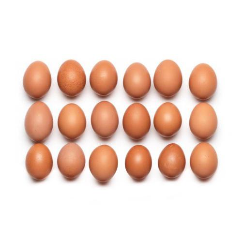 Zusatz-Abo: 6 Bio KAG Eier vom Eichberg