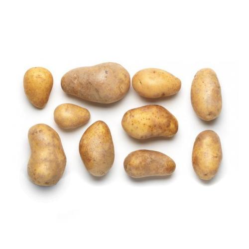 BIO Kartoffeln 1kg