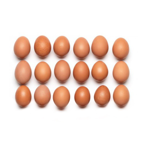 6 Bio KAG Eier vom Eichberg